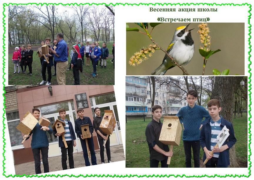 Весенняя акция школы «Встречаем птиц»