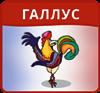 Всеукраїнський конкурс з французької мови  «Галлус»